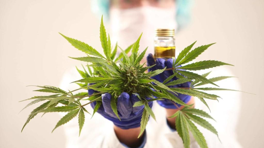 Stress & Anxiety How Marijuana Can Help